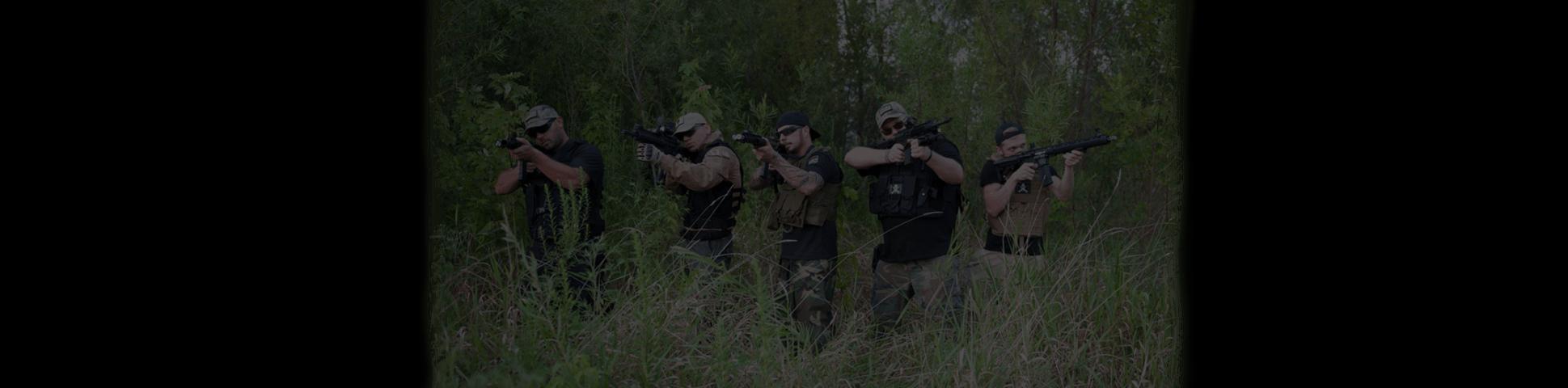 gun-sliders-1a